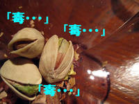 1_img_1457_copy