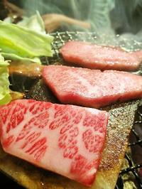 Foodpic1915052
